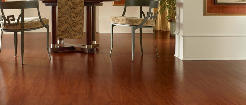Vinyl Flooring Scorpion Group Home Remodeling